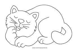 Disegni Da Colorare Dei Gattini