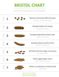 Stool Movement Chart 7 Questions You Should Be Asking About Your Bowel Movements