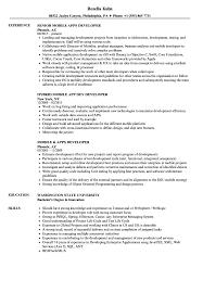 Developer Mobile Resume Samples Velvet Jobs