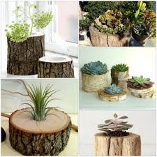 Tree trunk decoration DIY projects plant pots crafting