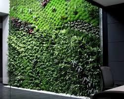 largest vertical garden cleans indoor