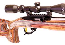 burdy rose laminated ruger 10 22 stock
