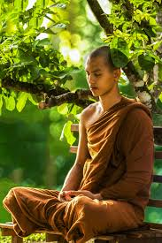 Free Images : person, plant, flower, green, produce, peaceful, sitting,  autumn, peace, religion, zen, spiritual, religious, meditation, temple,  beauty, theravada buddhism, spirituality, bhikkhu, photo shoot, human  positions, monk meditating 2848x4272 - -