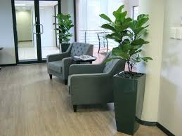 office pot plants. Cute Office Plant Pots Indoor 5pcs Colorful Mini Flower Planting Pot Gardening Plants
