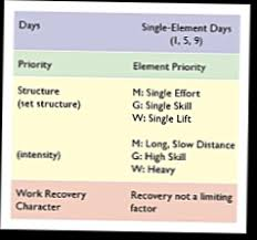 Theoretical Template For Crossfits Programming By Greg Glassman