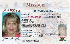 New New Brochure Brochure Driver License License Driver New Driver