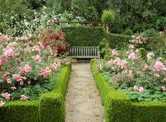 Small Picture A Pretty Small Garden Bed With Roses And Annuals A Walk Through