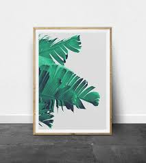 Small Picture Best 25 Tropical decor ideas on Pinterest Tropical design