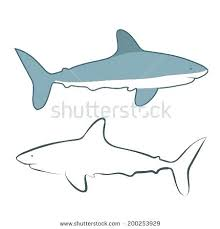 Outline Of A Shark Outline Of A Shark Shark Outline Outline