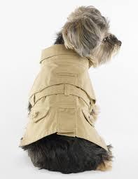 desired ralph lauren dog trench coat