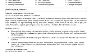 Social Media Resume Heavy Equipment Mechanic Resume Resume For