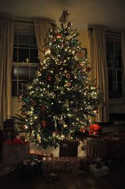 christmas trees decorated with presents. Simple Presents FileChristmas Tree With PresentsJPG Inside Christmas Trees Decorated With Presents A