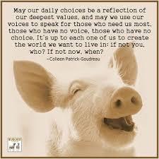 Vegan Quotes Magnificent Vegan Quotes Compassion Google Search Compassion Pinterest