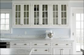 Kitchen Fascinating Glass Kitchen Cabinet Doors Glass Kitchen