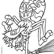 Small Picture Tarantula and pumpkin coloring pages Hellokidscom