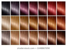 Shades Of Purple Hair Dye Chart