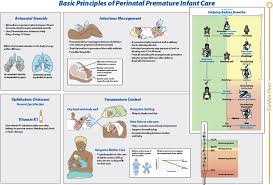 How To Develop A Birth Plan A Low Cost Care Bundle Reduces Preterm Infant Mortality In