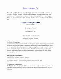 International Format Resume Awesome Sample Of Resume For Security