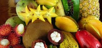 Výsledek obrázku pro ovoce