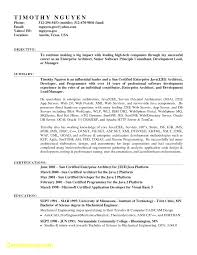 Functional Resume Template Google Docs Functional Resume Template For In Word 17