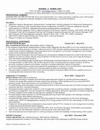 Sap Crm Functional Consultant Resume Sample Inspirational Sap Basis