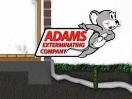 adams exterminating denton. Fine Adams Adams Exterminating  Intended Denton