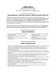 Senior Executive Resume Sample Resume Sample Senior Sales Executive ...