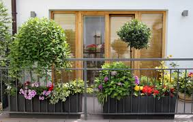Small Picture How to Master Urban Balcony Gardening Trendspot Inc