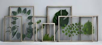 floating glass picture frames framed leaves glass on glass floating glass wall picture frames