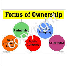 forms of ownership business economics basic edutoys