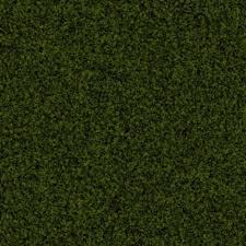 green carpet texture. GOVGRID CARPET SOFT SHAG GREEN2 Green Carpet Texture