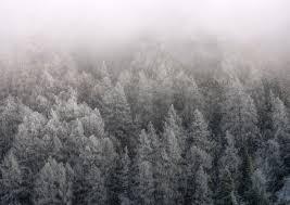 photographier les paysages en hiver n est pas une tache facile lorsqu il s agit de territoires enneigés les marches d approches s avè plus pliquées