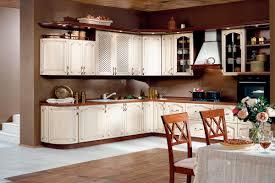 Mirrored Kitchen Cabinet Doors Bath Design Ideas White Varnised Wooden Kitchen Cabinet Kitchen