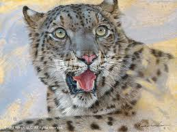 snow leopard canvas giclee art print wall art on snow leopard canvas wall art with snow leopard canvas giclee art print wall art wall decor wild wings