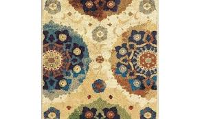 outdoor area rugs area rugs discontinued runner decoration home gardens rug cascade heights barrow blue outdoor area rugs
