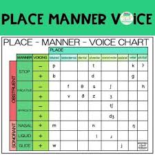 Place Manner Voice Chart Freebie Library Speech Pathology Speech Language Therapy