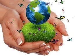 Resultado de imagen para imagenes del medio ambiente