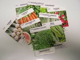 garden seeds. Exellent Seeds Gardenseeds For Donations Fort Erie Food Banks And Community Kitchen  Programs Ideas Throughout Garden Seeds