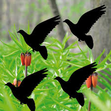 4 Aufkleber 10cm Taube Vogel Schwarz Fenster Warnvögel Vogelschutz
