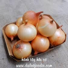 Hành tây 300g - DalatFOODIE I Thực phẩm hữu cơ - Organic foods for All  Children