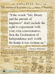 If The Words Life Liberty And The Pursuit Of Happiness Don't Awesome Life Liberty And The Pursuit Of Happiness Quote