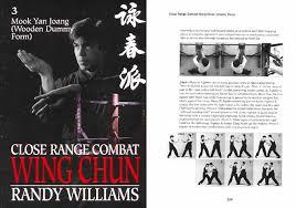 wing chun pai kung fu
