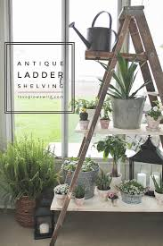 Create shelving out of an old antique ladder with this easy tutorial! Click  for details