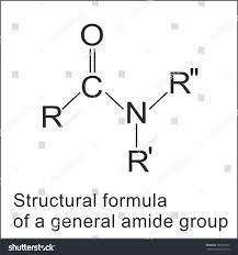 what is structural formula structural formula amide group stock vector 787097053 shutterstock