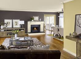 brilliant placement of living room color scheme ideas to