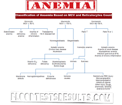 Blood Count Chart For Anemia Pin On Medical Laboratory Science
