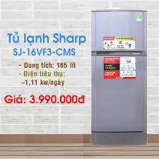 Tủ lạnh Sharp 165 lít SJ-16VF3-CMS Link... - Điện máy XANH  (dienmayxanh.com)