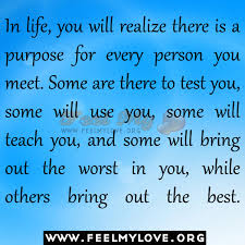 My Purpose In Life Quotes Inspiration Download My Purpose In Life Quotes Ryancowan Quotes