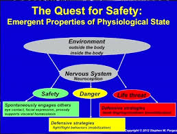 Polyvagal Theory Chart Polyvagal Theory Diagram Google Search Nervous System