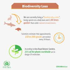biodiversity of teeb the main motor forces drivers related to the degradation and loss of biodiversity and ecosystems